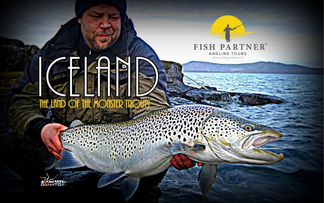 ICELAND The land of the monster trouts